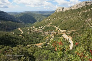 Provence I 13